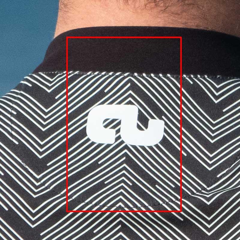 Image of branding back